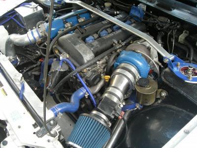 IMGP6572.JPG